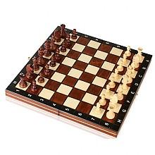 마돈 마그네틱 체스